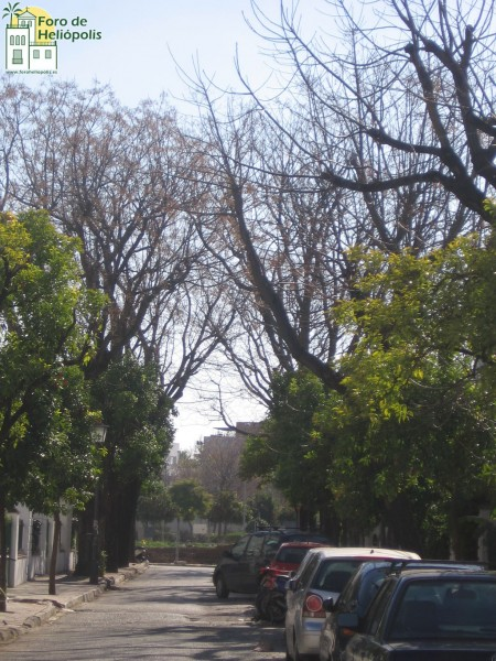 Calle Paraguay