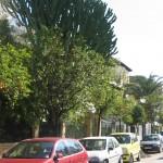 Calle Nicaragua