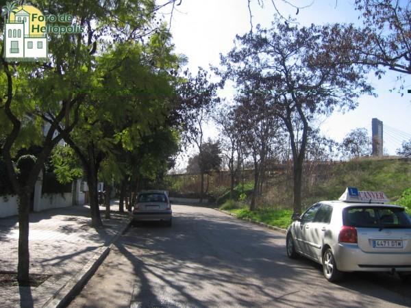 Tala indiscriminada en Heliópolis